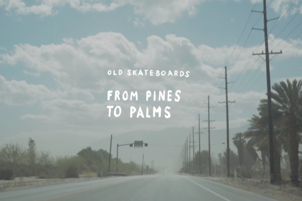 From Pines to Palms with Neal A. Unger