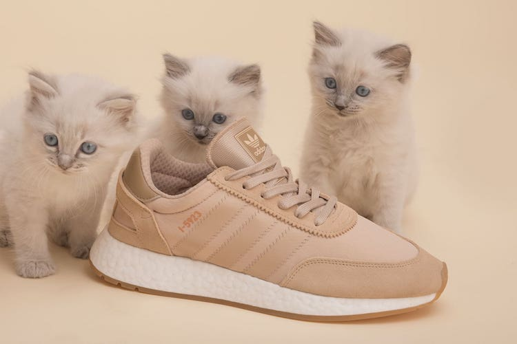 Sneakersnstuff x adidas Originals I-5923 Pack